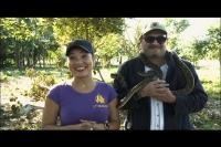 Canal Habana:  ¿POR QUÉ SOLO EN VERANO?